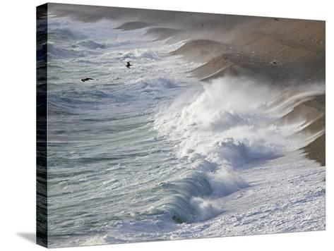 Storm Waves At Chesil Beach-Adrian Bicker-Stretched Canvas Print