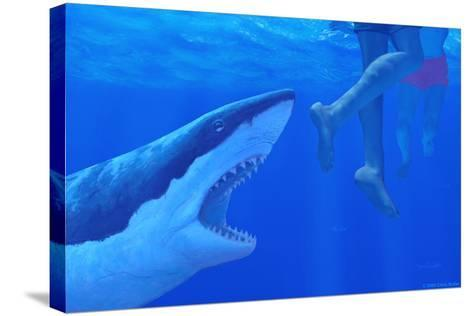 Shark Attack-Chris Butler-Stretched Canvas Print