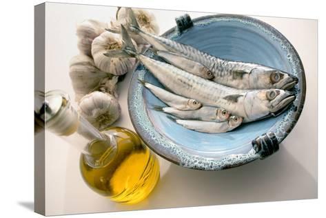 Plate of Mackerel-Erika Craddock-Stretched Canvas Print
