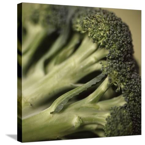 Broccoli-Cristina-Stretched Canvas Print
