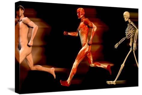 Running Man-Christian Darkin-Stretched Canvas Print