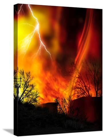 Fire Whirl, Artwork-Victor Habbick-Stretched Canvas Print
