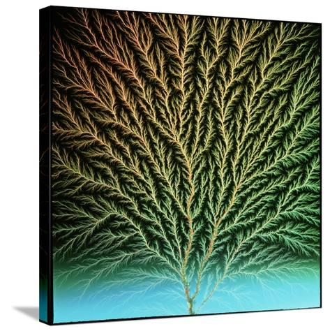 Electron Tree In a Block of Plastic-Steve Horrell-Stretched Canvas Print