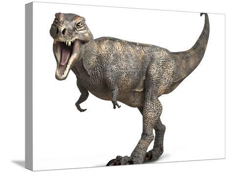 Tyrannosaurus Rex Dinosaur-Roger Harris-Stretched Canvas Print