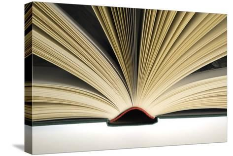 Open Book-Steve Horrell-Stretched Canvas Print