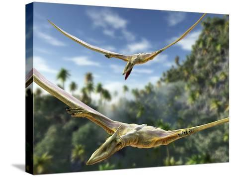 Pterosaurs Flying, Computer Artwork-Roger Harris-Stretched Canvas Print