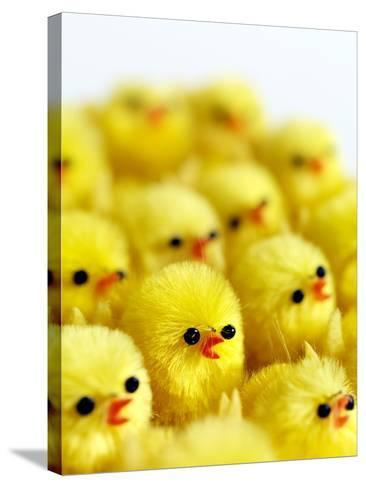 Toy Chicks-Tek Image-Stretched Canvas Print