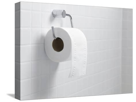 Toilet Paper Holder And Roll-Tek Image-Stretched Canvas Print