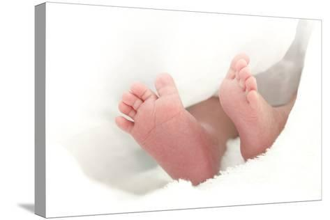 Baby's Feet-Ruth Jenkinson-Stretched Canvas Print