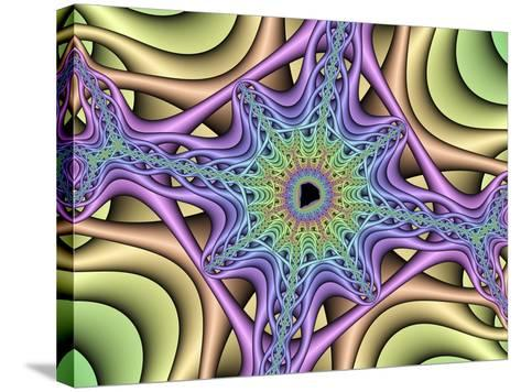 Computer-generated Mandelbrot Fractal-Mehau Kulyk-Stretched Canvas Print