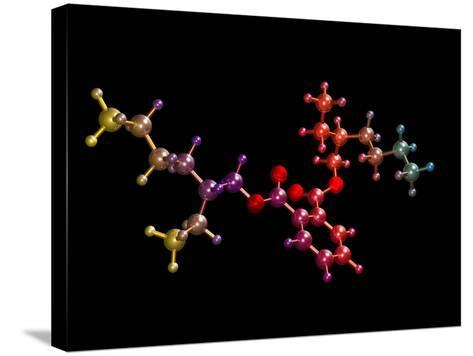Di(2-ethylhexyl) Phthalate-Dr. Mark J.-Stretched Canvas Print