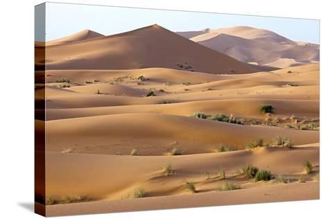 Saharan Sand Dunes-Bob Gibbons-Stretched Canvas Print