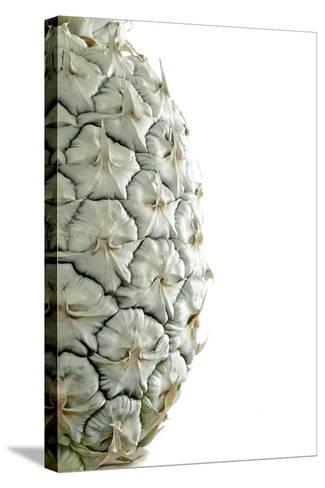 White Pineapple-Neal Grundy-Stretched Canvas Print