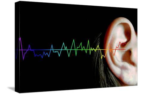 Hearing-Neal Grundy-Stretched Canvas Print