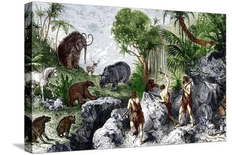 Prehistoric Humans And Animals-Sheila Terry-Stretched Canvas Print