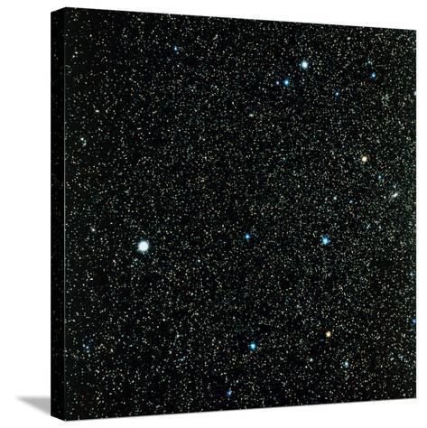 Pegasus Constellation--Stretched Canvas Print