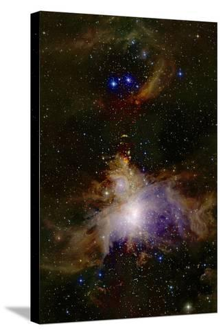 Great Orion Nebula--Stretched Canvas Print