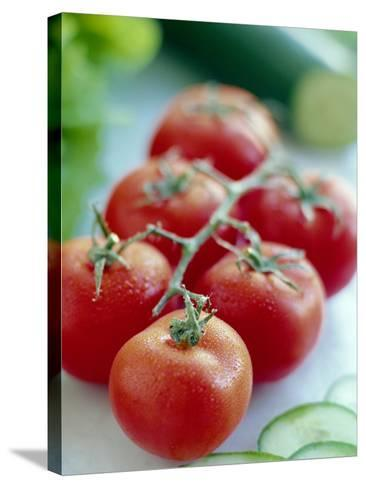Tomatoes-David Munns-Stretched Canvas Print
