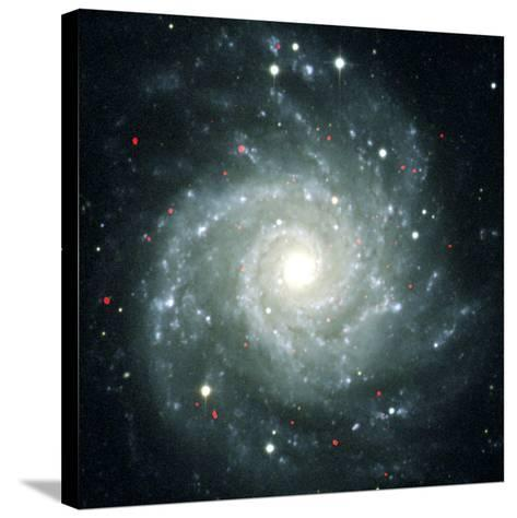 X-ray Sources In M74, Chandra Image--Stretched Canvas Print