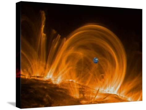Solar Coronal Loops--Stretched Canvas Print