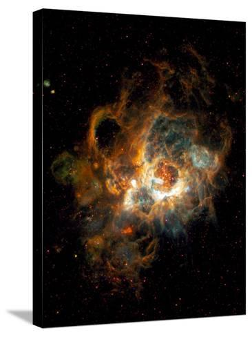 Hubble Space Telescope View of Nebula NGC 604--Stretched Canvas Print