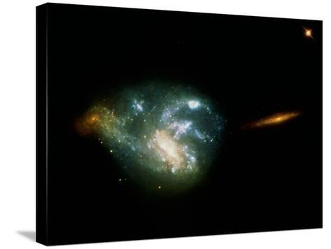 Irregular Galaxy NGC 7673--Stretched Canvas Print