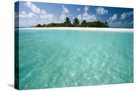 Tropical Beach-Matthew Oldfield-Stretched Canvas Print