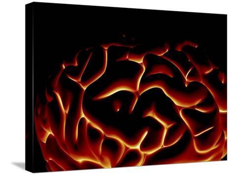 Human Brain, Artwork-PASIEKA-Stretched Canvas Print