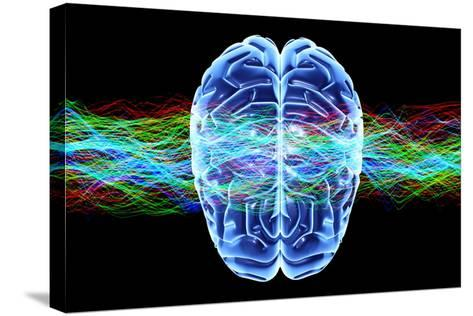 Human Brain, Conceptual Artwork-PASIEKA-Stretched Canvas Print