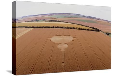 Crop Formation In Form of Mandelbrot Set-David Parker-Stretched Canvas Print