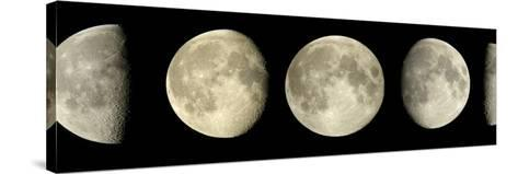 Phases of the Moon-Pekka Parviainen-Stretched Canvas Print