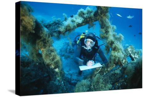 Underwater Biological Research-Alexis Rosenfeld-Stretched Canvas Print