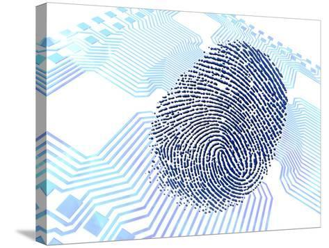Biometric Fingerprint Scan, Artwork-PASIEKA-Stretched Canvas Print