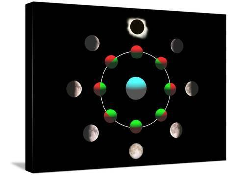 Composite Time-lapse Image of the Lunar Phases-John Sanford-Stretched Canvas Print