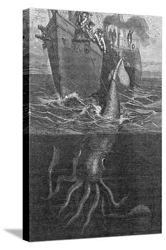 Gigantic Squid And Ship, 19th Century-Middle Temple Library-Stretched Canvas Print
