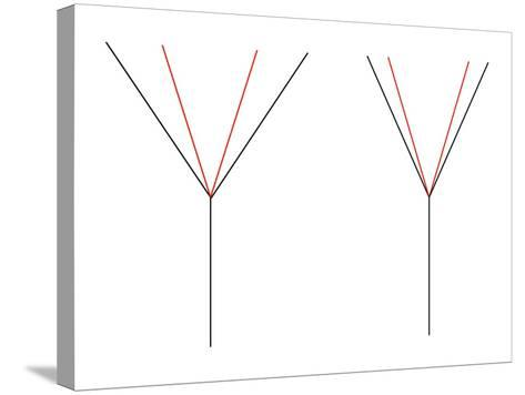 Angle Illusion-Science Photo Library-Stretched Canvas Print