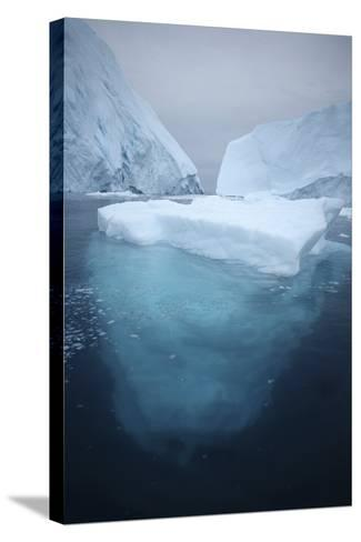Iceberg-Robbie Shone-Stretched Canvas Print
