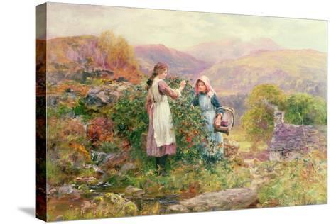 Blackberry Gatherers-Henry John Yeend King-Stretched Canvas Print