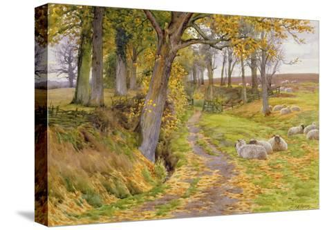 An Autumn Afternoon-Charles James Adams-Stretched Canvas Print