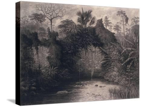 View of the Gulf of Biafra, West Africa, 1877-Emma Sandys-Stretched Canvas Print