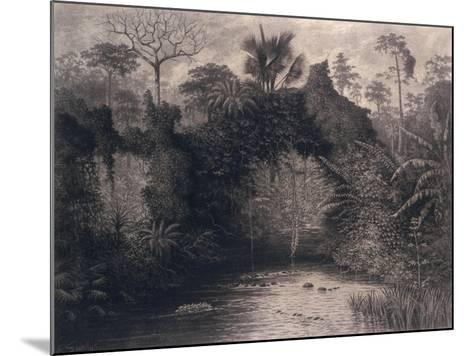 View of the Gulf of Biafra, West Africa, 1877-Emma Sandys-Mounted Giclee Print