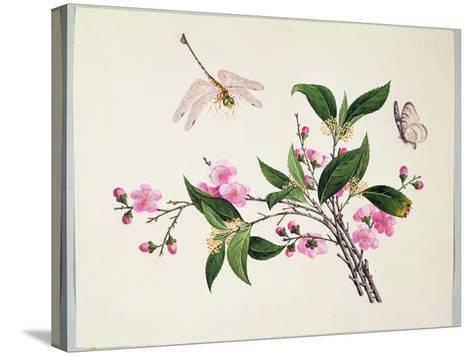 Cherry Blossom (?) Dragonfly and Butterfly--Stretched Canvas Print