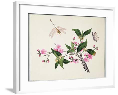 Cherry Blossom (?) Dragonfly and Butterfly--Framed Art Print