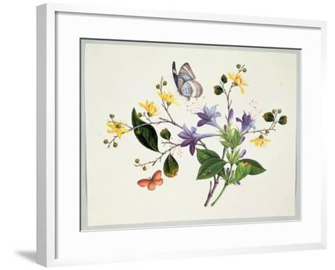 Flower Study and Insects--Framed Art Print