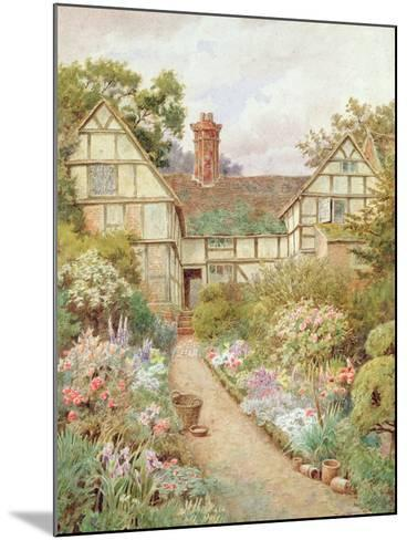 Cottage Garden-Thomas Nicholson Tyndale-Mounted Giclee Print