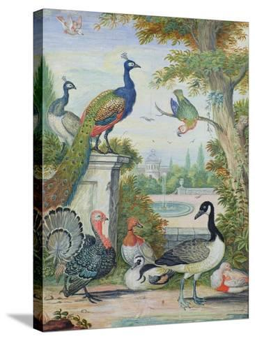 Exotic Birds and Domestic Fowl in a Picturesque Park, Early 18th Century-Jakob Bogdany-Stretched Canvas Print