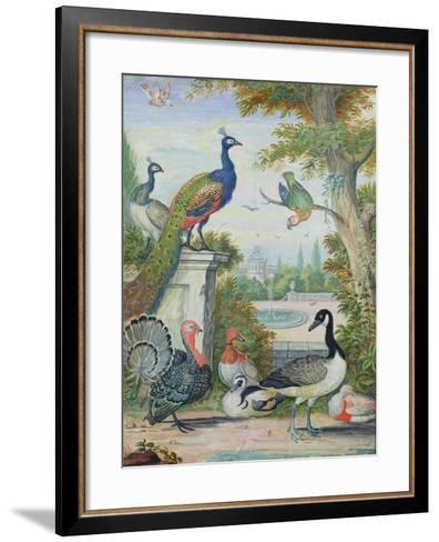 Exotic Birds and Domestic Fowl in a Picturesque Park, Early 18th Century-Jakob Bogdany-Framed Art Print