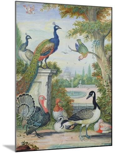 Exotic Birds and Domestic Fowl in a Picturesque Park, Early 18th Century-Jakob Bogdany-Mounted Giclee Print