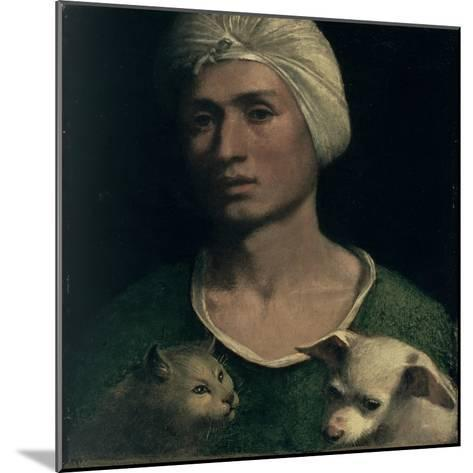 Portrait of a Young Man with a Dog and a Cat-Dosso Dossi-Mounted Giclee Print