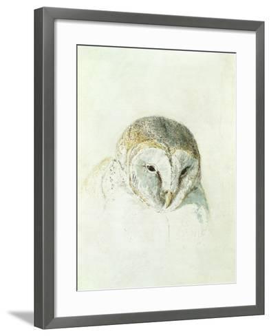 White Barn Owl, from the Farnley Book of Birds, C.1816-J^ M^ W^ Turner-Framed Art Print